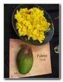 International Mango Festival - Fairchild Garden
