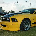 2005 Steeda Ford Mustang Pictures - Moroso Motorsports Speedway - Florida
